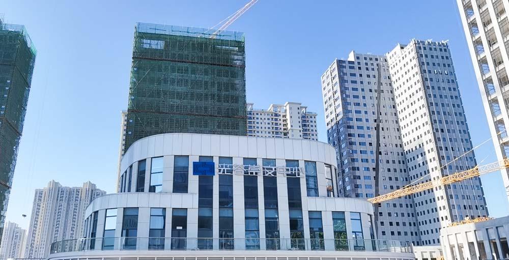 光谷崇文中心-万博汇佳工程案例
